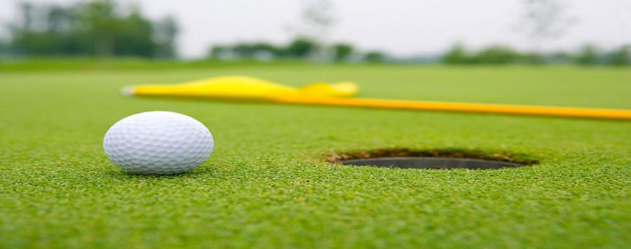 Northeast Golf Takes Fifth At Region XI Championship