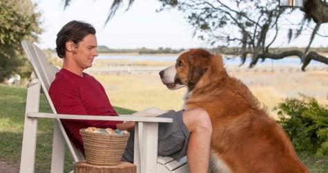 Nicholas Sparks makes serious 'Choice'