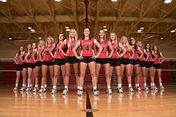 Hawks volleyball defeats Ellsworth in three sets
