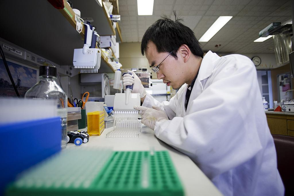 Researcher Huang Huang concucts an experiment on a flu vaccine at the Stanford University School of Medicine on February 6, 2013.