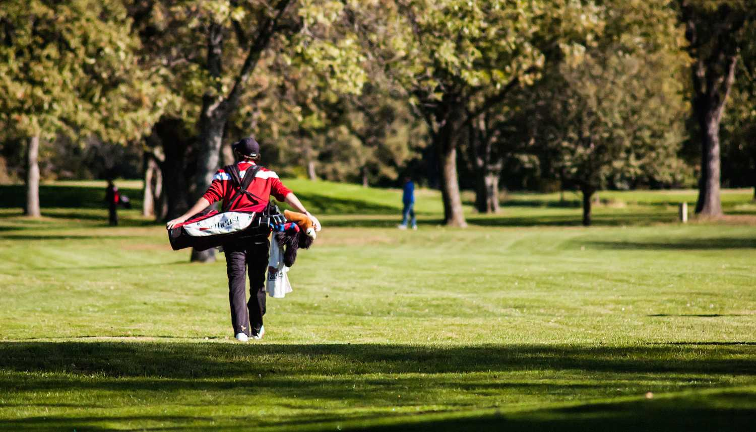 Hawks place fourth at Region XI Tournament; Schaefer qualifies for nationals