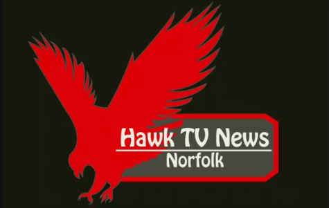 Hawk TV Logo