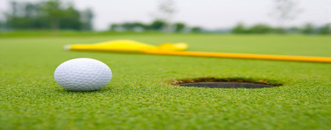 Northeast Defeats Central In Men's Golf  Dual
