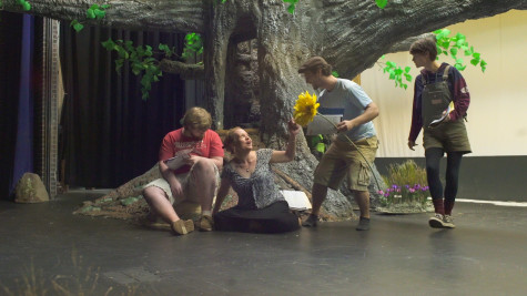 Meet the cast of Midsummer Night's Dream