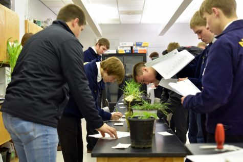FFA student uses competition as a career builder