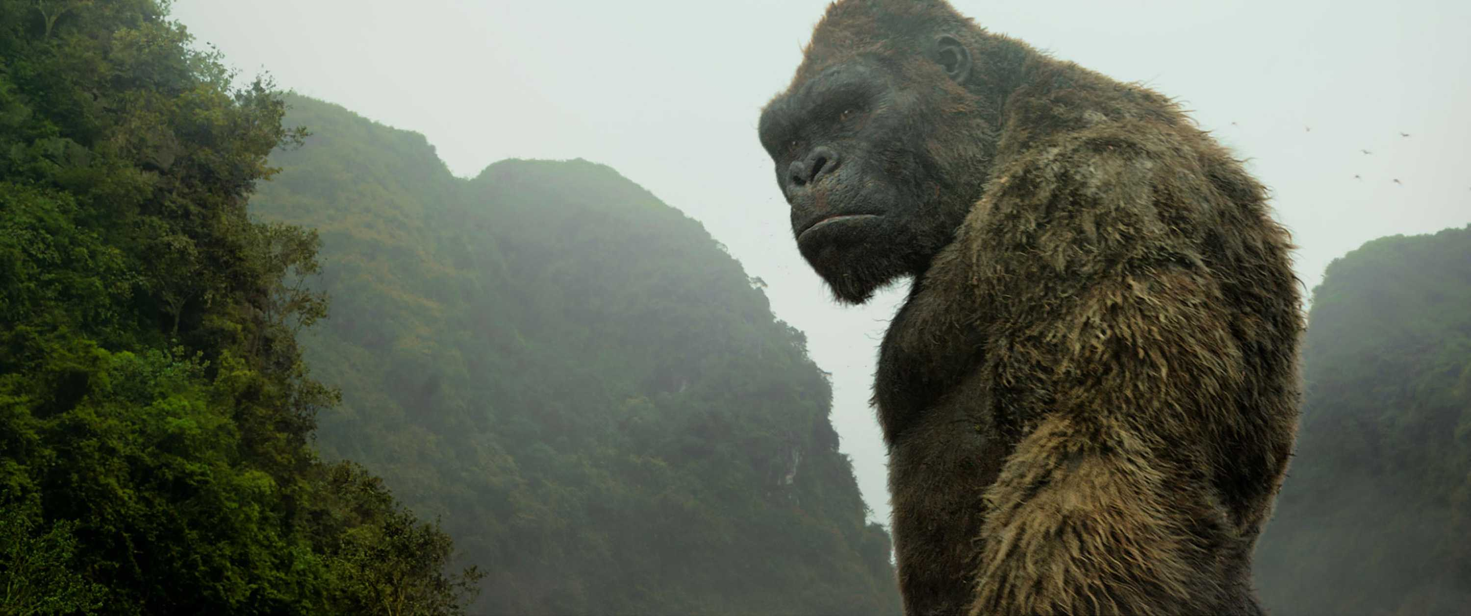 Kong in the film
