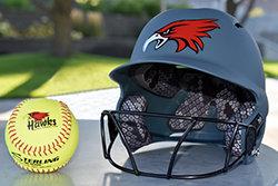 Northeast-Southwestern softball doubleheader rescheduled