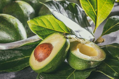 Is your avocado an illegal clone? Grower sues Miami competitor over trendy hot-seller