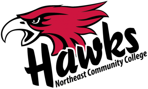 Hawks volleyball grabs first conference win of 2019